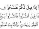 Quran Al Muzadallah (58) : 11