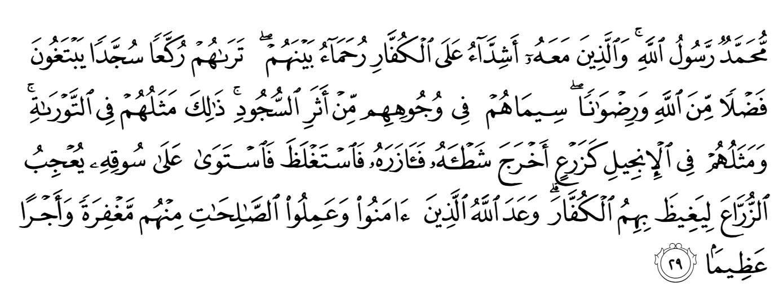 Quran Surah Al Fath (48) Ayat 29